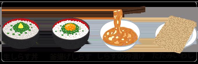 業務用桜えび挿絵⑥_しらす_関東と関西で獲れるシラスの違い
