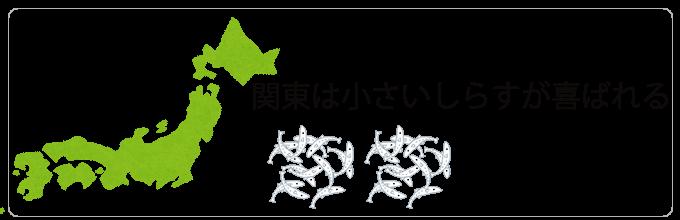 業務用桜えび挿絵⑤_しらす_関東と関西で獲れるシラスの違い