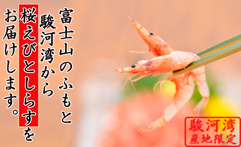 富士山の麓、駿河湾から桜えびとしらすをお届けします