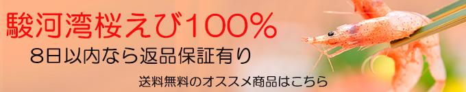 挿絵③_桜えびとオキアミ